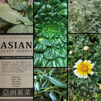 """Asian Leafy Greens"" Seed Collection"