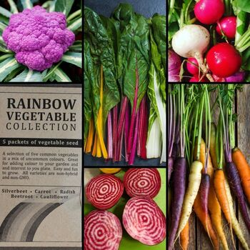 """Rainbow Vegetable"" Seed Collection"