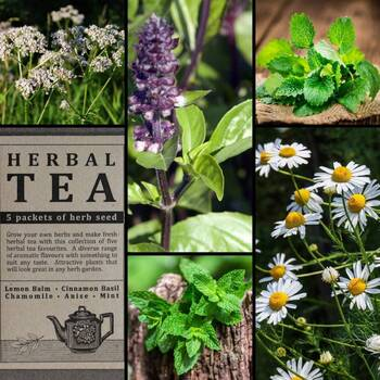 """Herbal Tea"" Seed Collection"