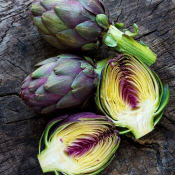 Artichoke- Purple Headed