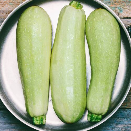 Zucchini- Italian Light Green