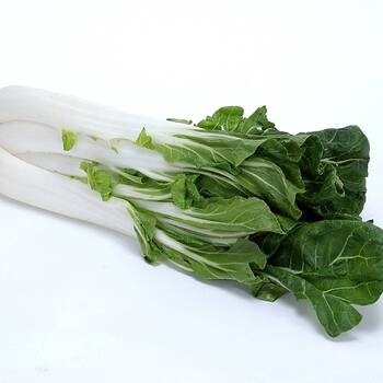 Cabbage, Chinese- Pak Choi - Kwang Moon