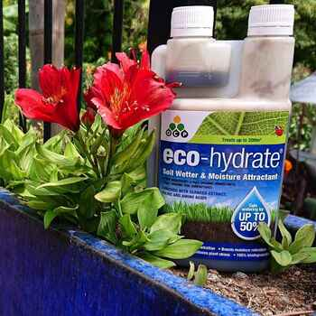 Eco Hydrate Soil Wetter- Concentrate 500ml