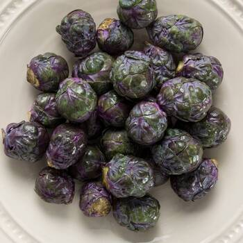 Brussels Sprouts- Red
