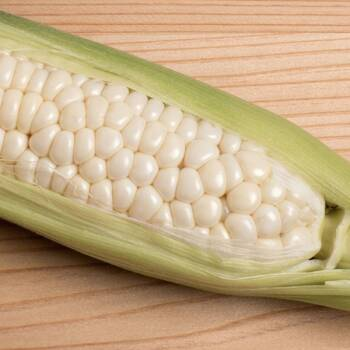 Corn, Sweet- Country Gentlemen