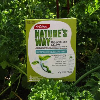 Natures Way Organic Caterpillar Killer- 40g