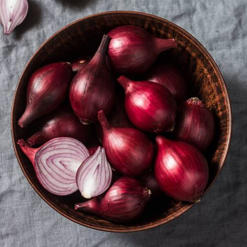 Onion- Red Odourless